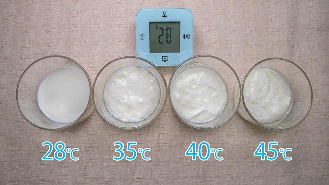 4つの温度で作ったヨーグルト