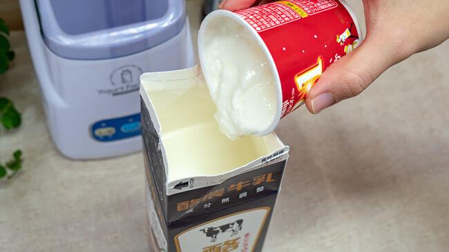 牛乳にヨーグルトを投入している