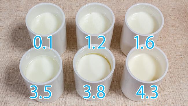 完成した6種類のヨーグルト